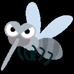 【痒み注意報】蚊がネット越しにやたらめったら刺そうとしてくる動画